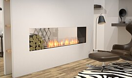 Living Area See-Through Fireplaces Flex Fireplace Idea