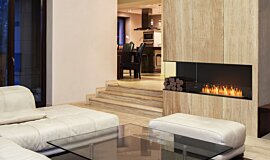 Living Area Indoor Fireplaces Flex Sery Idea