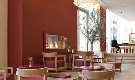 Vapiano, UK Linear Fires Fireplace Insert Idea