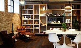 Raw Salon Linear Fires Fireplace Insert Idea